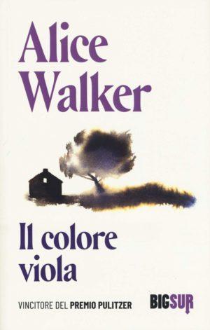 Romanzo storico famiglia afroamericana e discriminazione Il colore viola di Alice Walker